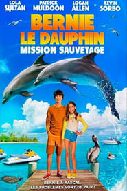 Bernie le dauphin 2 en streaming
