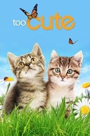 Too Cute 2011