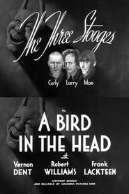 A Bird In The Head