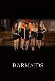 Barmaids streaming vf poster