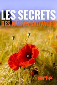 Les Secrets des fleurs sauvages 2019