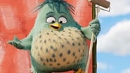 Angry Birds : Copains comme cochons images