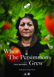 When the Persimmons Grew