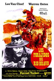 Descargar Los forajidos de Río Bravo en torrent
