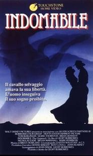 Indomabile 1988