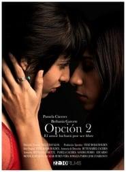 Opción 2 2010