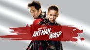 Ant-Man et la guêpe images