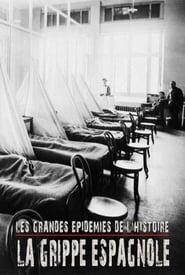 Les grandes épidémies de l'histoire : la grippe espagnole