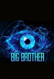 Poster Big Brother Mexico 2015