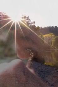 Cruising Elsewhere (17                     ) Online Cały Film Lektor PL