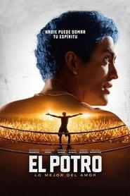 Poster El Potro: lo mejor del amor