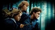 EUROPESE OMROEP | Harry Potter en de Relieken van de Dood - Deel 1