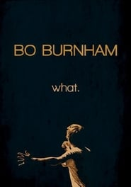 Bo Burnham: What. 2013