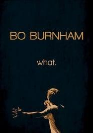 Poster Bo Burnham: What. 2013