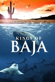Kings of Baja (2014)