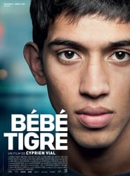 Young Tiger (2015)