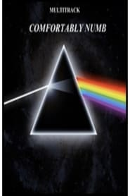 مترجم أونلاين و تحميل Pink Floyd – Comfortably Numb 2005 مشاهدة فيلم