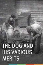 Les chiens et ses services 1908