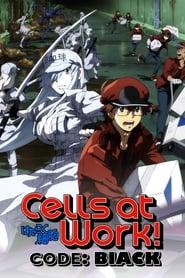 Cells at Work! Code Black: Season 1