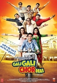 Gali Gali Chor Hai 2012 Hindi Movie JC WebRip 300mb 480p 1GB 720p 3GB 6GB 1080p