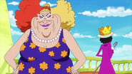 One Piece Dress Rosa Arc (2) Episode 717 : Trueno Bastardo! Kyros' Furious Strike!