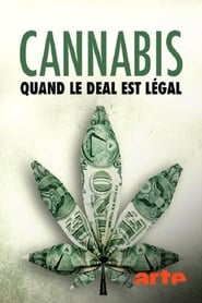 Cannabis : quand le deal est légal