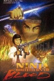 Ninja Knight: Brothers of Blood 1988