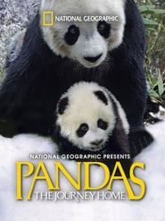 Image Pandas: The Journey Home