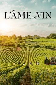 L'âme du vin en streaming