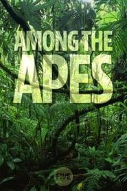 Among the Apes 2009