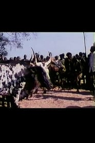 Ondyelwa: a Festa do Boi Sagrado