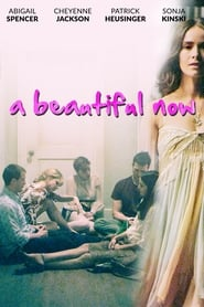 A Beautiful Now (2015)