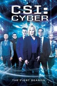 CSI: Cyber - Season 1 poster