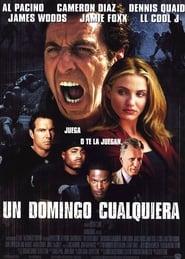Un domingo cualquiera (1990) | Any Given Sunday