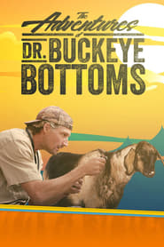 Poster The Adventures of Dr. Buckeye Bottoms 2018
