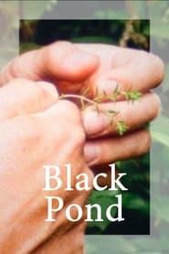 Black Pond (2018)