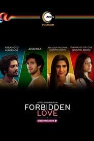 مشاهدة مسلسل Forbidden Love مترجم أون لاين بجودة عالية