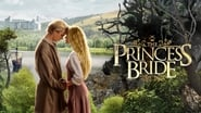 Wallpaper The Princess Bride