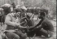 Daniel Boone - Season 1 Episode 10 : Pompey