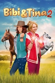 Bibi & Tina: Bewildered and Bewitched (2014)