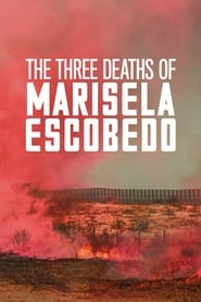 Poster The Three Deaths of Marisela Escobedo 2020