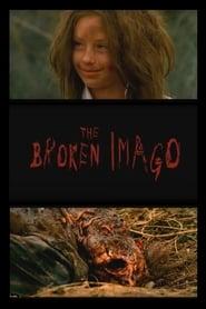 The Broken Imago