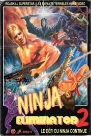 Ninja Eliminator 2: Quest of the Magic Ninja Crystal 2010
