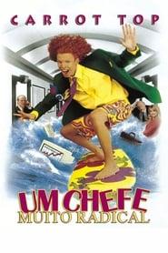 Der Chaotenboss (1998)