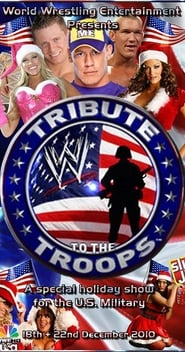 WWE Tribute to the Troops 2017