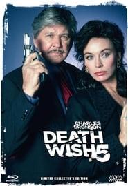 Death Wish 5 - Antlitz des Todes (1994)
