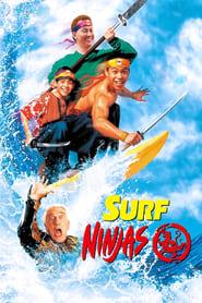 Les Fous Du Surf Ninjas