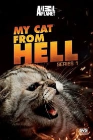 Poster My Cat from Hell 2017