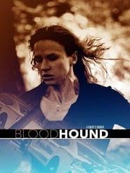 Bloodhound 2015