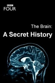 The Brain: A Secret History 2011
